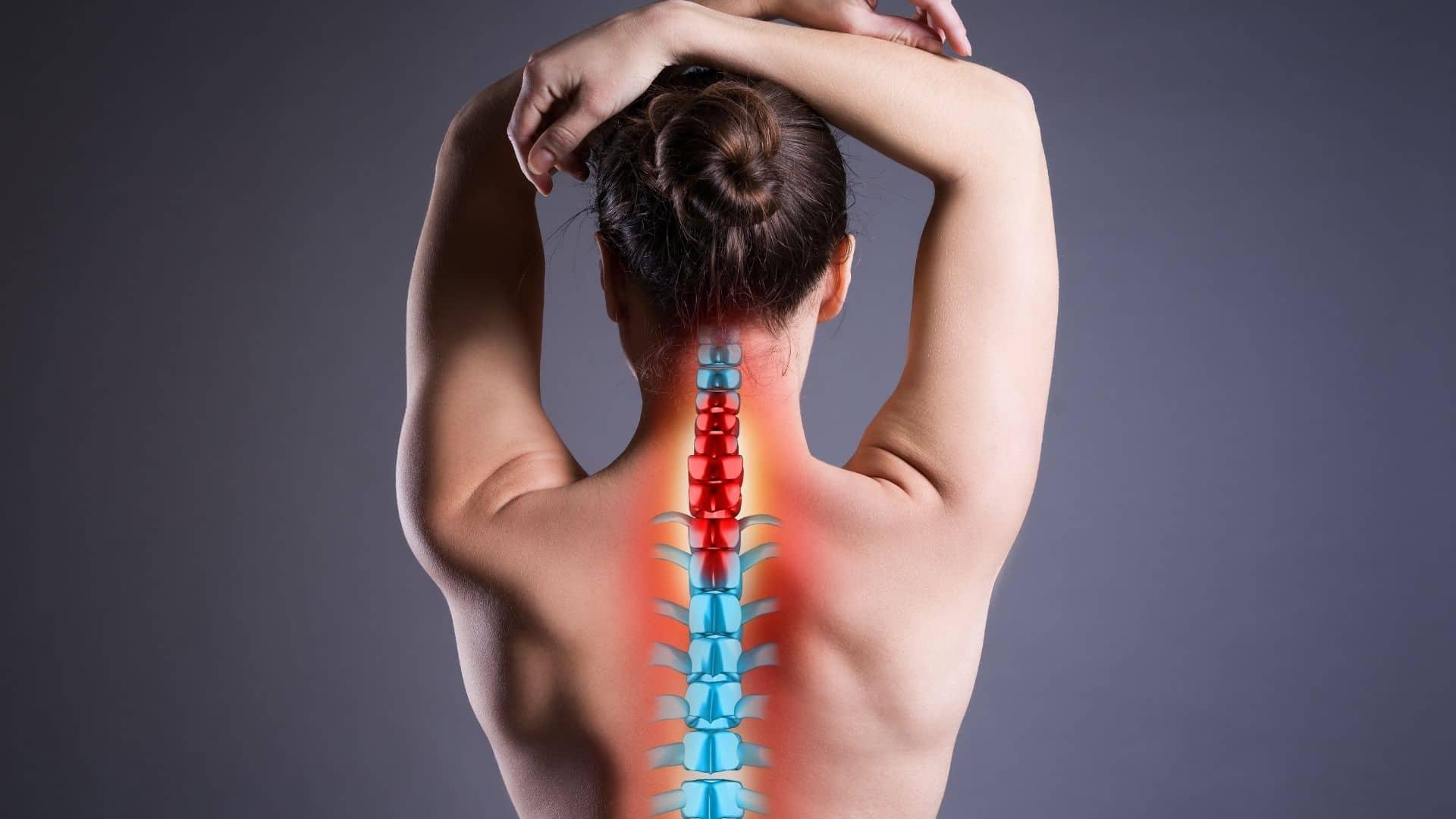 kiropraktor behandling vejle